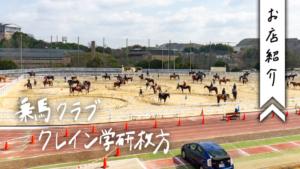 乗馬クラブクレイン学研枚方