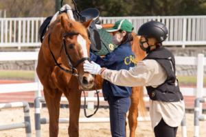 今日から乗馬という新しい趣味を!乗馬クラブ クレインが枚方にオープン【体験レポ】
